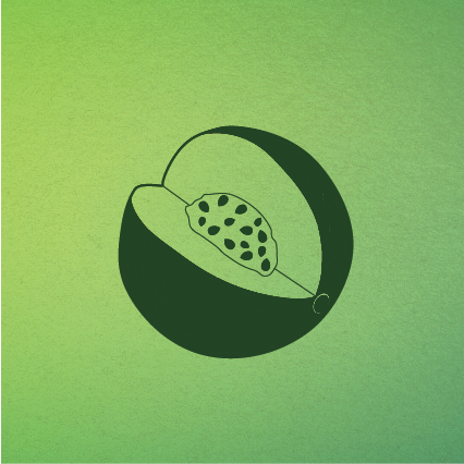 melon-09