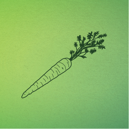 zanahoria-17