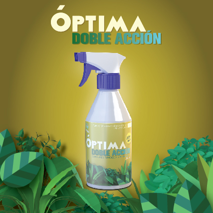 optima amarillo web-02